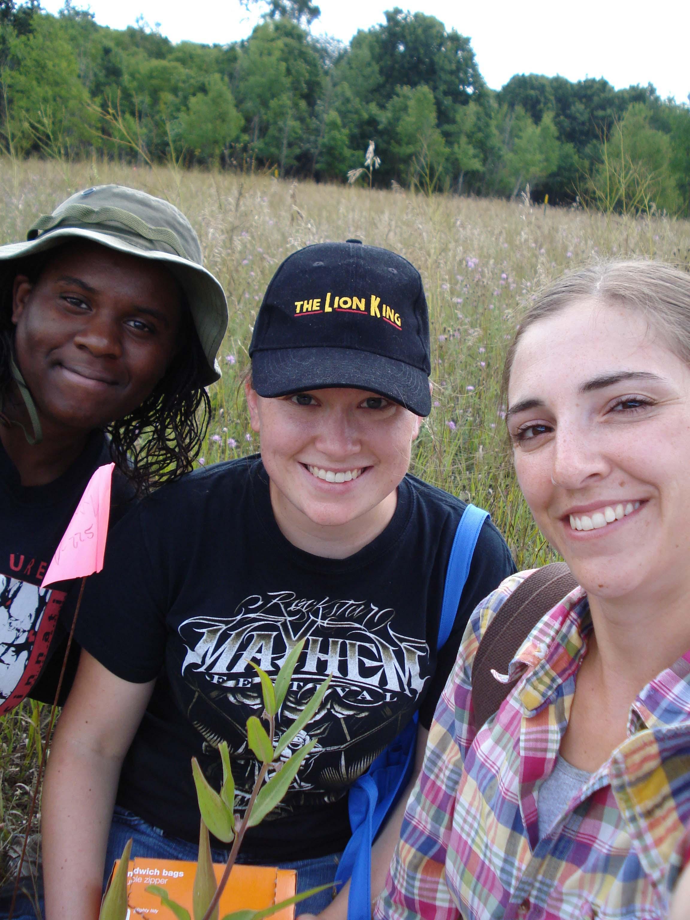 Field, Summer 2009