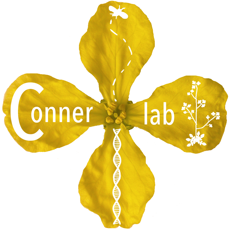 Conner lab